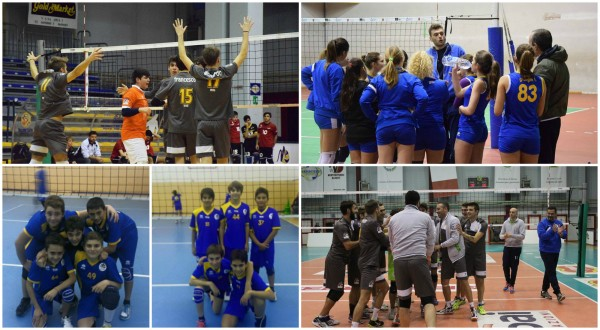COLLAGE PARTITE
