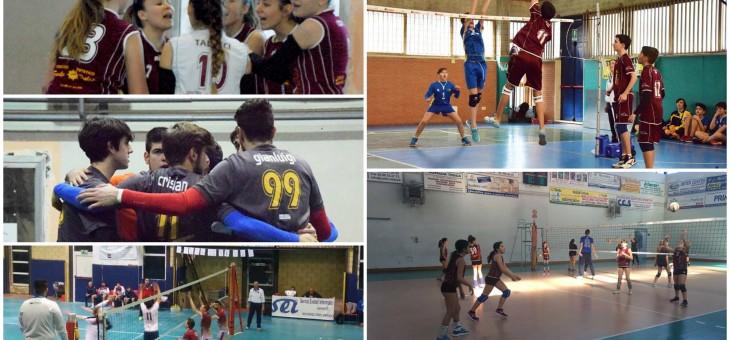 L'U16F parte bene nella fase finale, vittorie per U14 e Scuola Pallavolo