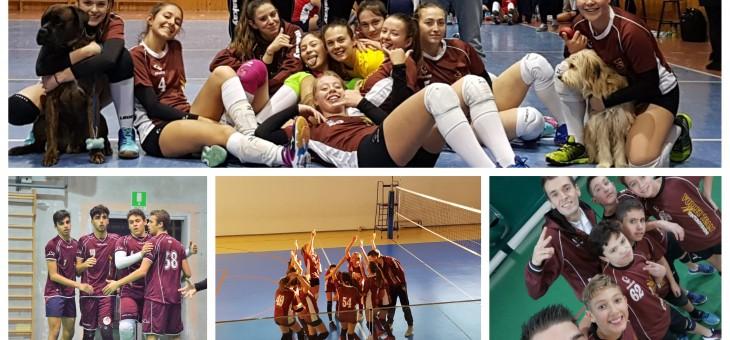 Giovanili: I Divisione capolista, le ragazze U18F e IIDF sorridono. Al via l'U13F